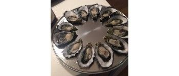 Oysters - Cook, Serve and Open